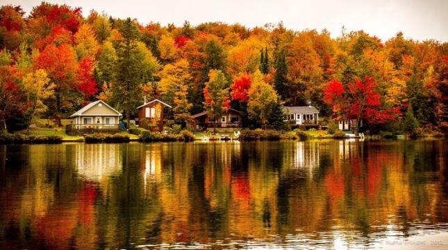 image: Autumn in Quebec © numa crouzet