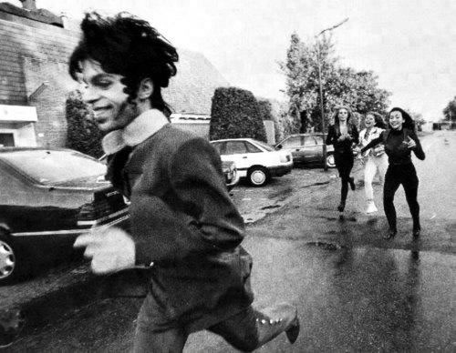 The Genius Prince & love on the run image © David Z Rivkin